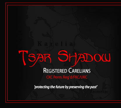 Karelian Bear Dogs - Tsar Shadow Kennels